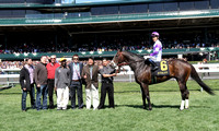 Handsome Mike with Mario Gutierrez up wins the 2013 Commmonwealth for trainer Doug O'Neil and owner J. Paul Reddam