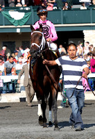 Jack Milton on the inside with John Velasquez up wins the 2013 Transylvania for trainer Todd Pletcher and owner Gary Barber of whom neither was present. Up with the Birds (3) on the outside came in se