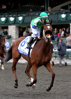 Freedom Reigns, 2nd division of the 2012 Pin Oak Valley View, 2012 Keeneland Fall Meet