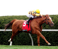 Wise Dan with Jose Lezcano up wins the 2013 Maker's 46 Mile for trainer Charlie LoPresti and owner Morton Fink. 2013 Keeneland Spring Meet