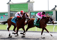 Conspiracy in the 6th race on 4-21-2013 during the 2013 Keeneland Spring Meet
