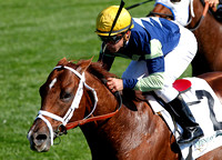 Bridgetown with Javier Castellano up wins the 2012 Woodford for trainer Todd Pletcher and owner Eugene Melnyk, 2012 Keeneland Fall Meet