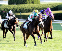 Madame Giry with Eddie Castro up wins the Buffalo Trace Franklin County for trainer Cam Gambolati and owners Mr./Mrs. Thomas Tierney, 2012 Keeneland Fall Meet