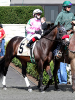 Richard's Kid, 2013 Ben Ali, during the 2013 Keeneland Spring Meet