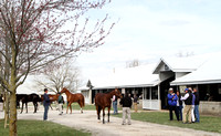2013 Keeneland April Sale