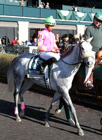 Charming She Is, 2012 Rood and Riddle Dowager, 2012 Keeneland Fall Meet.