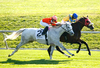 Tapitsfly with Jose Lezcano up wins the 2012 First Ladyfor trainer Dale Romans and owner Frank L Jones, 2012 Keeneland Fall Meet