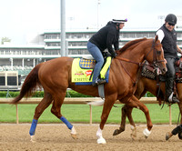 2014 Kentucky Derby Morning Works