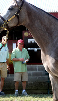 2013 Keeneland September Sale Photos