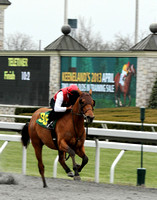 2013 Keeneland April Sale Breeze Show